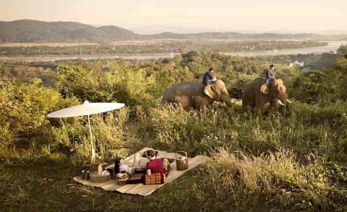 Chiang Rai Elephant Camp